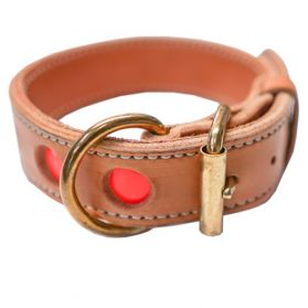 18 inch reflecto Leather Collar