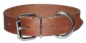 "Leather 1"" Bully D-Ring Collar"