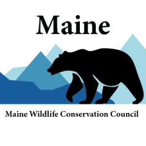 Donate to the Maine Wildlife Conservation Council