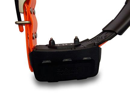 Garmin TT15 Track and Train Collar Close Up