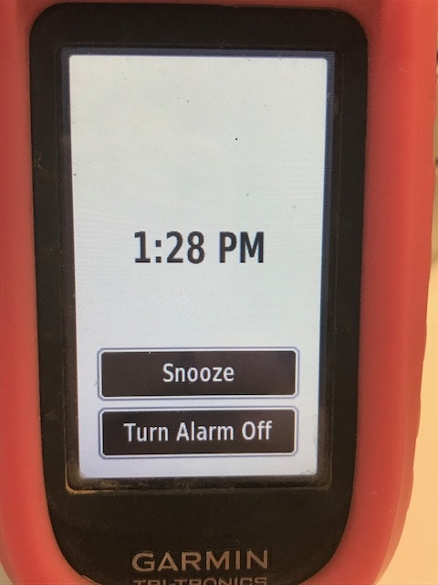 How do I turn on the Alarm Clock on my Alpha 100 handheld | Double U